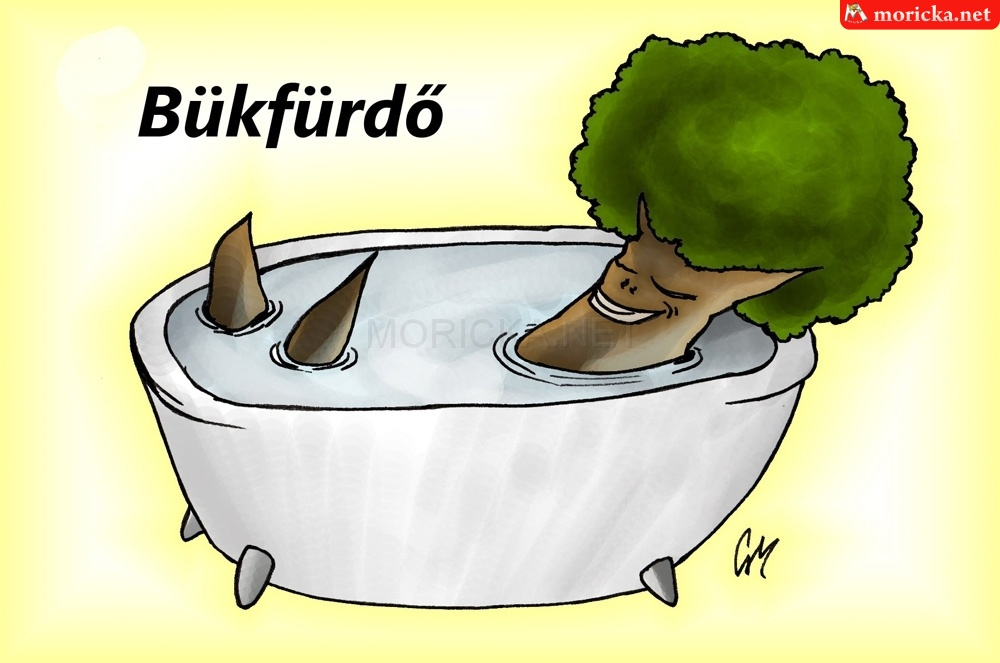 Bükkfürdő