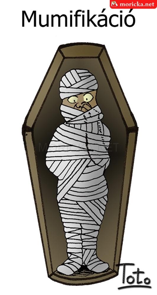 Mumifikáció