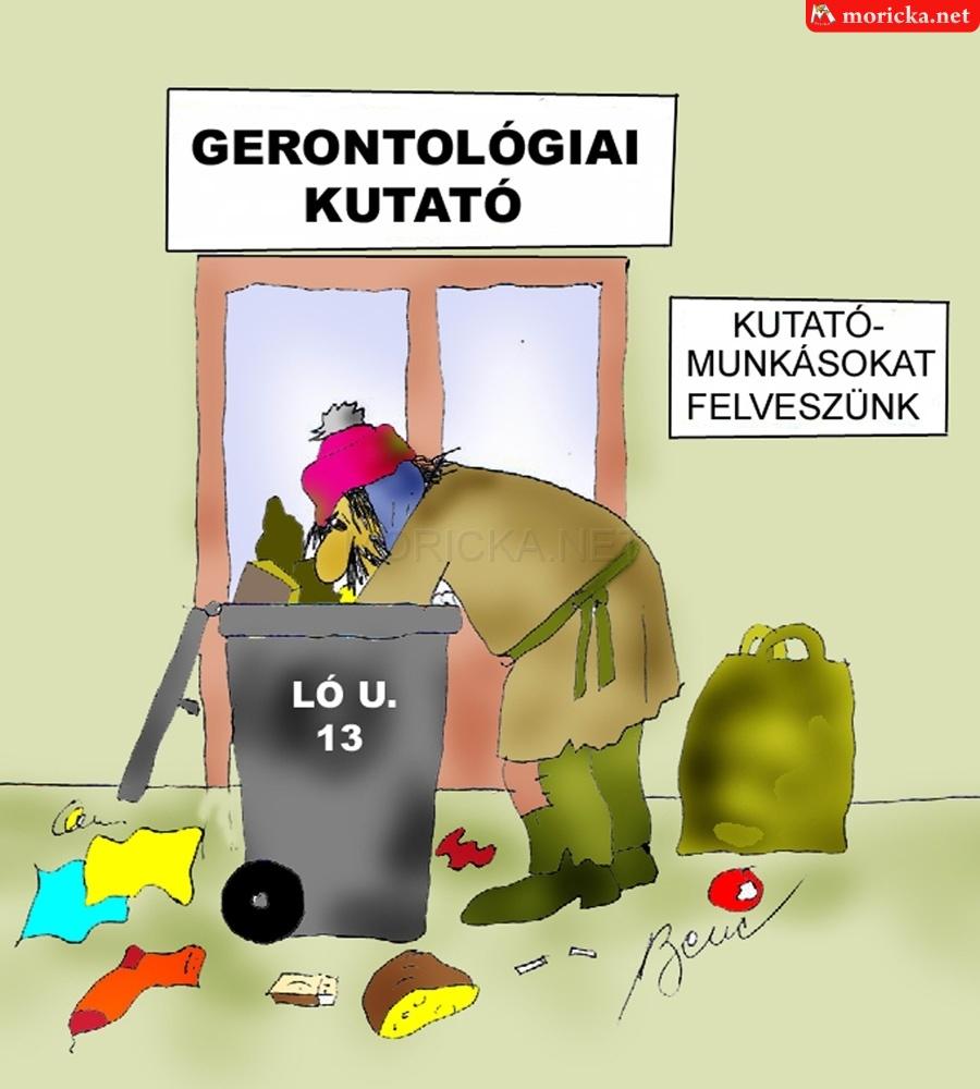 Gerontológiai kutató
